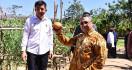 Desa Diberdayakan, Indonesia Bisa Jadi Produsen Pangan Terbesar - JPNN.com