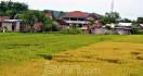 Lagi, Crop Circle di Bantul Buatan Manusia - JPNN.com