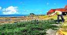 Produksi Rumput Laut Berada di Titik Nadir - JPNN.com