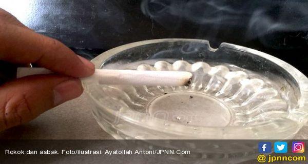Ini Alasan Kenapa Merokok Harus di Luar Ruangan - JPNN.COM
