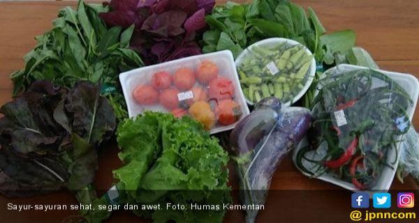Jenis Makanan Ini Baik Bagi Penderita Asam Urat Lifestyle Jpnn