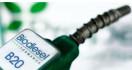 Gaikindo: Di Bidang Biodiesel, Indonesia Terdepan - JPNN.com