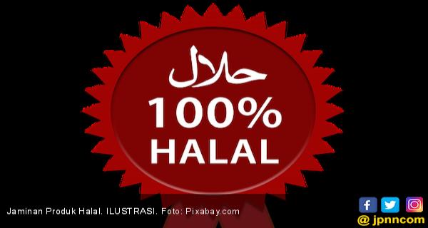 Mui Kritisi Peraturan Sertifikasi Halal Bpjph Ekonomi Jpnn Com Mobile