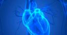 8 Kiat Menjaga Kesehatan Jantung dan Ginjal - JPNN.com