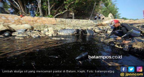 DLH Angkut 195 Karung Limbah Minyak yang Mencemari Laut Batam - JPNN.COM