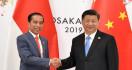 Xi Jinping: Tiongkok Sudah Mengidentifikasi Kesulitan Indonesia - JPNN.com