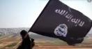 5 Berita Terpopuler: 200 Anak Anggota ISIS Dipulangkan, Gaji PPPK Kapan Cair? - JPNN.com