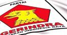 Gerindra Isyaratkan Usung Nonkader di Pilkada NTB - JPNN.com
