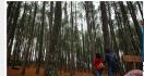 Ini Lima Tempat Wisata Alam yang Ramah Anak di Manado - JPNN.com
