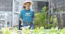 Mentan Bicara Semangat Pertanian dan Program KUR di Kampung Sayur, - JPNN.com