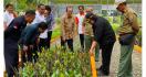 KLHK Bangun 120 Hektare Persemaian Modern di Lokasi Ibu Kota Negara Baru - JPNN.com
