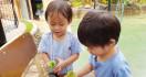 Tips Jitu Memilih Daycare untuk si Buah Hati - JPNN.com