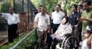 Kebun Binatang Surabaya Kini Dilengkapi Jogging Track - JPNN.com