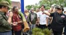 Menteri LHK: Penghijauan Harus Bersamaan dengan Konservasi Tanah dan Air - JPNN.com