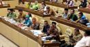 Ada Anggota Komisi II DPR Minta Honorer K2 Cari Pekerjaan Lain - JPNN.com
