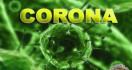 Bukan Tiongkok, Virus Corona Masuk Nigeria dari Negara Ini - JPNN.com