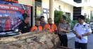 Dua Pelaku Pembalakan Liar Disergap Polisi - JPNN.com