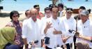 Mau Diajdikan Wisata Kelas Premium, Ini Instruksi Jokowi untuk Pengembangan Labuan Bajo - JPNN.com