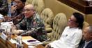 Honorer K2, Silakan Simak Kesepakatan Komisi II DPR dan Menteri Tjahjo - JPNN.com