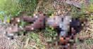 Isra Rabbani Dibunuh dan Dirampok Teman Sendiri, Mayatnya Dibuang di Perladangan - JPNN.com