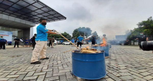 Kantor BNNP Banten Bau Asap Ganja - JPNN.COM