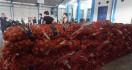 Bea Cukai Gagalkan Penyelundupan 1.835 Karung Bawang - JPNN.com