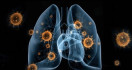 Buah Apa Bisa Memperkuat Imunitas Tubuh di Tengah Wabah Corona? - JPNN.com