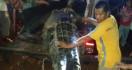 Polisi Tembak Mati Buaya yang Telan Bocah Berusia Enam Tahun - JPNN.com