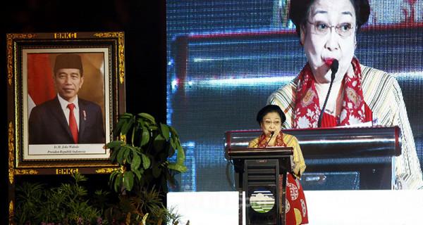 Megawati Terima Penghargaan dari BMKG dan Basarnas - JPNN.com